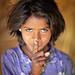 india by mauriziopeddis