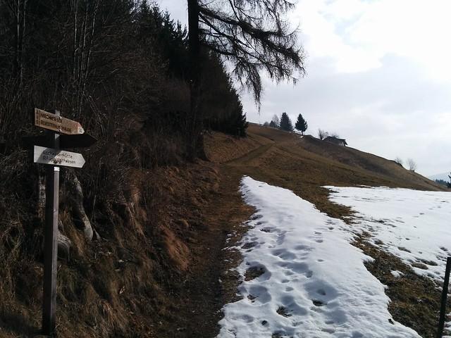 Aufstieg durch Wald und Bergwiesen