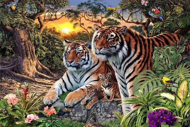 How many tigers can YOU FIND? By the way, do big cats in sanctuaries get lonely? http://ift.tt/1ps5AN3
