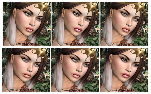 The Secret Garden Face Collage