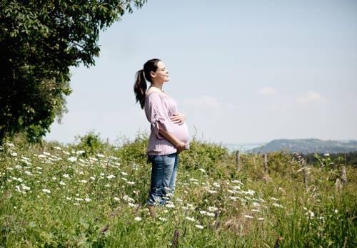 Những việc nên làm trong 3 tháng giữa thai kỳ 2
