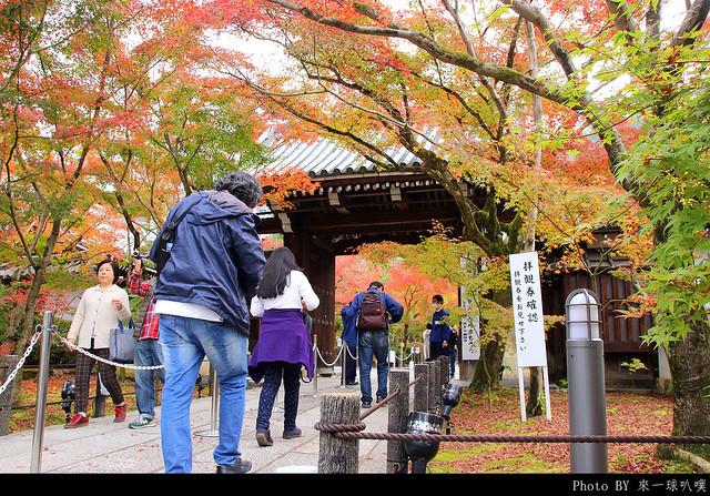 京都-永觀堂017