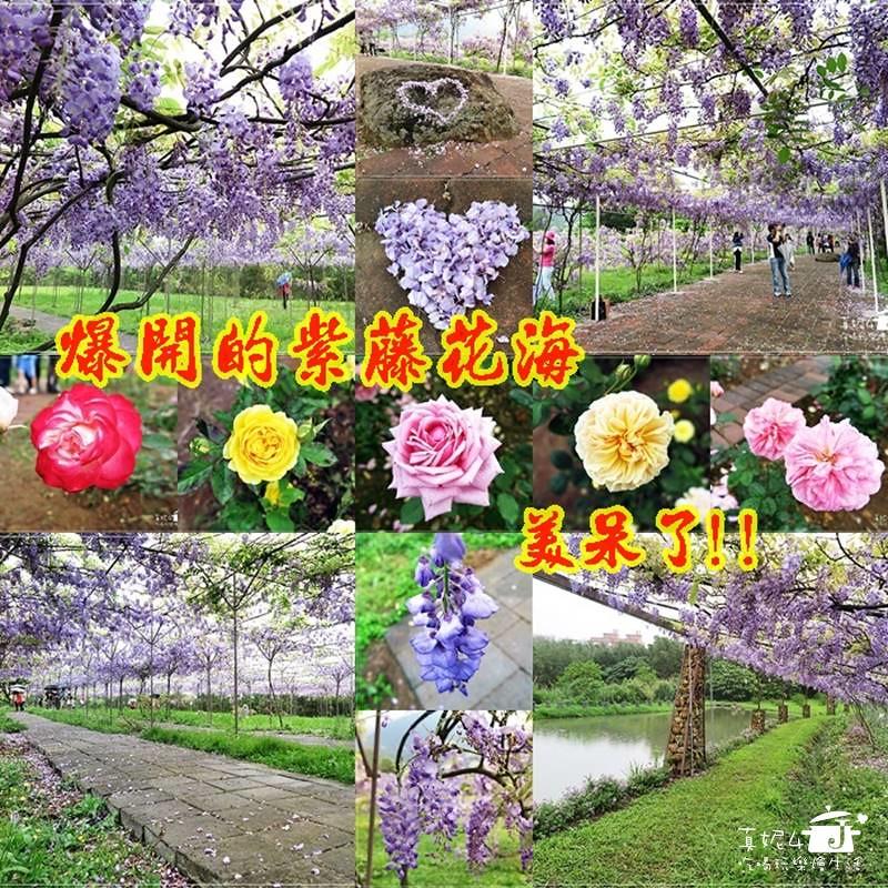 00淡水紫藤咖啡園page