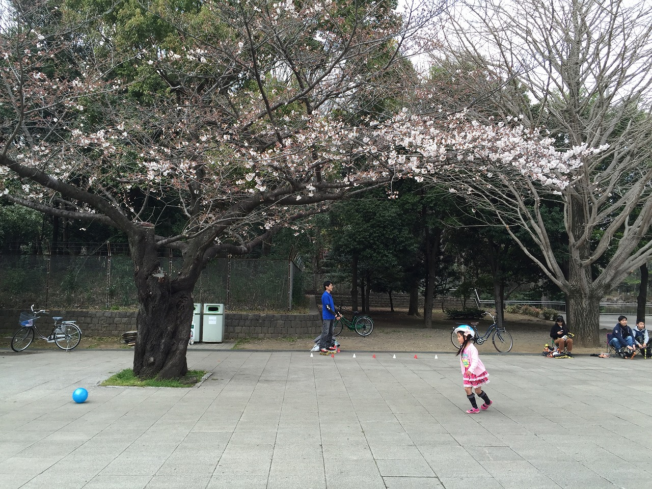 20160327_光が丘 (6)