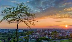 Sun Set Ciuperca Hill