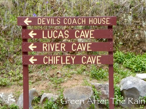 150918d Jenolan Caves _05 _SH (1)