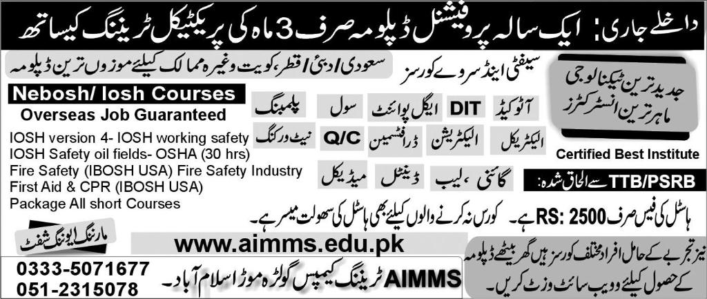 AIMMS Training Campus Short Courses 2016