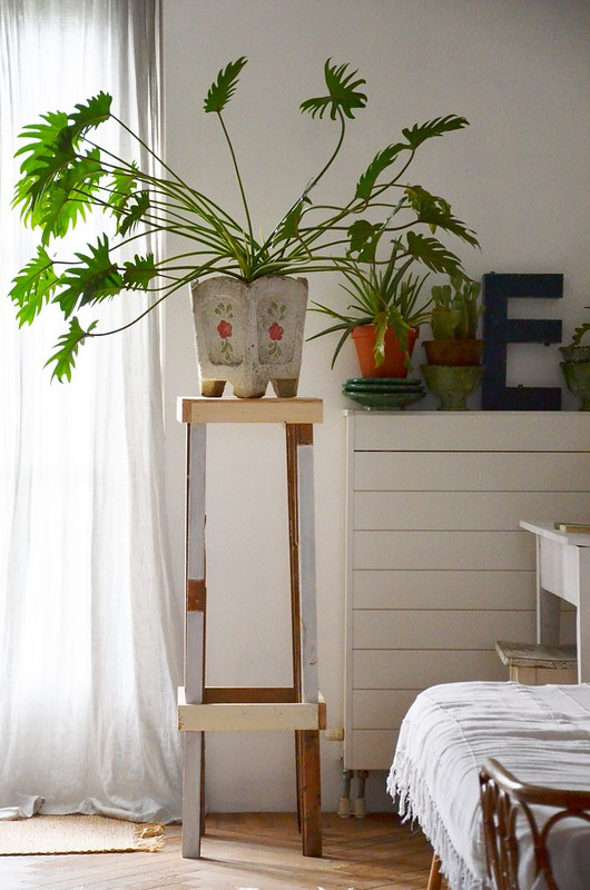 wood & wool plant stand