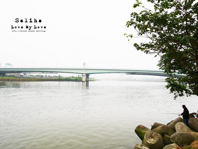 社子島溼地水鳥自行車道 (18)