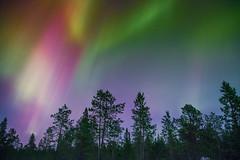Nightime Rainbow