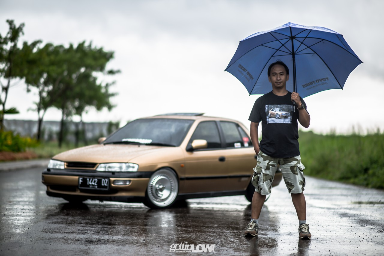 Timor Sephia Gold