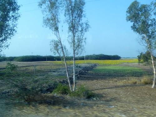 M16-Shwebo-Mandalay-route (1)