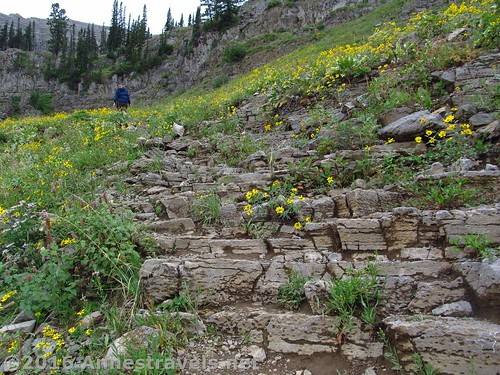 Part of the Stairway to Heaven, Jedediah Smith Wilderness Area and Grand Teton National Park, Wyoming