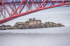 Forth_Bridges_walk_2093-1