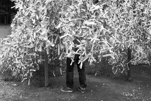 trip travel viaje winter vacation blackandwhite bw color blancoynegro monochrome japan season lens drive blackwhite nikon asia driving time noiretblanc earth roadtrip kagoshima transportation miyazaki viagem invierno fullframe nikkor ontheroad japon 28300mm kyushu japani kirishima d600 travelphotography naturalpark kagoshimaprefecture miyazakiprefecture nikond600 japón hyuganatsu schwarzweisfotografie kirishimayakunationalpark allinonelens kirishimashi кюсю japão kyūshū nikkor28300mmf3556gedvrafs kirishimacity chorioactisgeaster cửuchâu киусиу киушиу кагосима