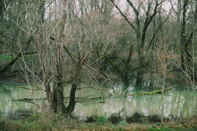 Le Rhône à Irigny, France [Canon AE-1, 200 ASA Film]