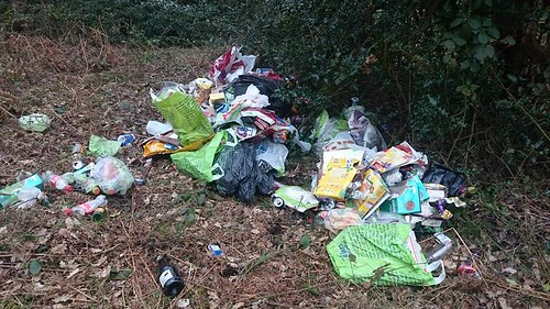 fly tipping Kindreds Wood Apr 16 1