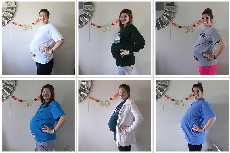 36-41 weeks