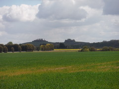 Wittenham Clumps from just outside Didcot