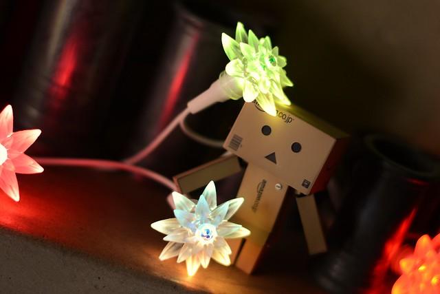 [Galerie commune] Danboard - Vos photos du petit robot en carton 23421409833_2b93aa0e82_z