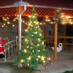 Nach der Wettervorhersage wird es allerdings grüne Weihnachten geben