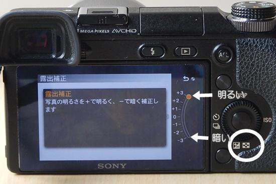 DSCN0251