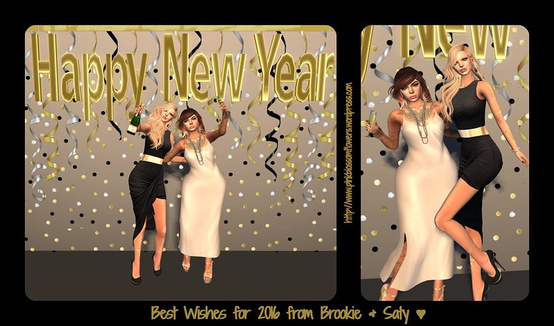 085 - Best Wishes for 2016 from brookie & saty