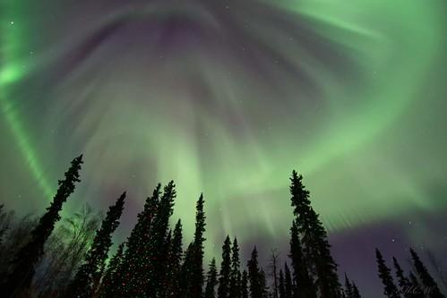 Beautiful Mornings in Alaska!
