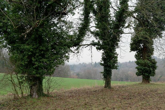 Bruchsaler Hügelland
