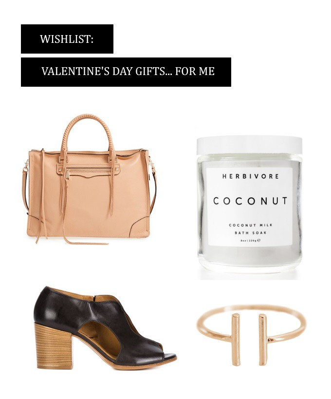 wishlist valentine's day gift ideas