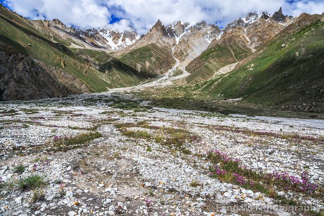 Summer Scenery In Karakoram, Shafung to Baintha, Biafo Hispar Snow Lake Trek, Central Karakoram National Park, Gilgit-Baltistan, Pakistan