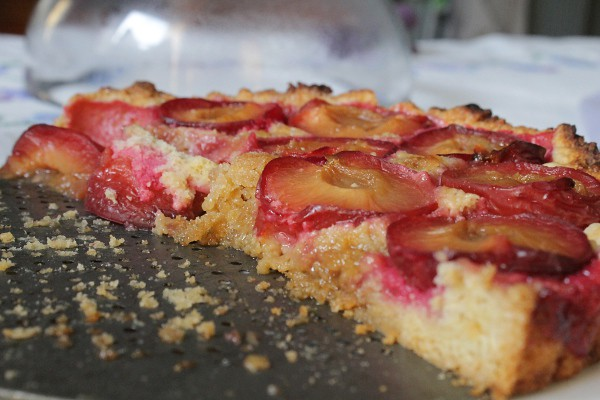 Plum Tart - Misericordia