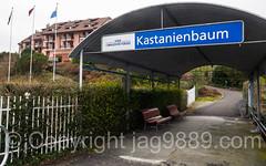 SGV Boat Station Kastanienbaum on Lake Lucerne, Central Switzerland