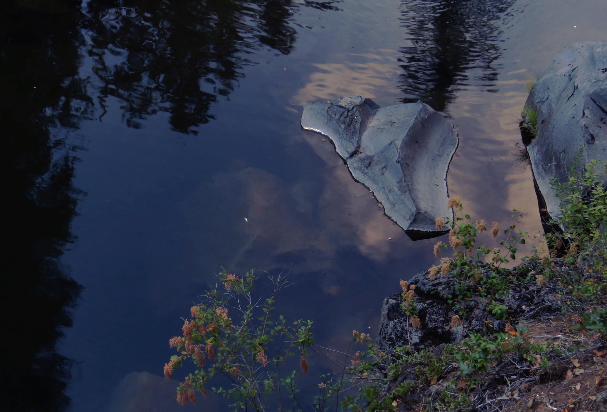 Rogue River, Oregon