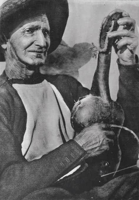 Viejo rabelero de la provincia de Toledo en 1920. Fotografía de José Ortíz Echagüe. Fondo Fotográfico de la Universidad de Navarra