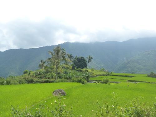 P16-Luzon-Tabuk-Tinglayen-route (32)
