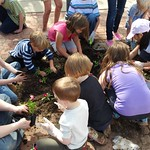 Earth Day Planting Party