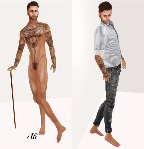 SLink Physique Male Mesh Body - A general Musing..