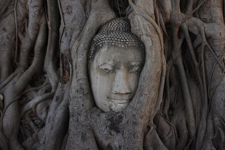 Wat-Maha-That_22