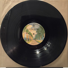 THE DOOBIE BROTHERS:THE CAPTAIN AND ME(RECORD SIDE-A)