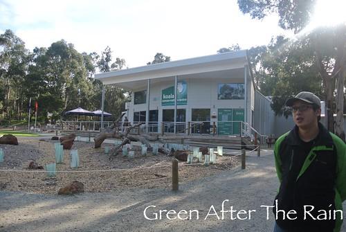 150911j Phillip Island Koala Conservation Centre _01