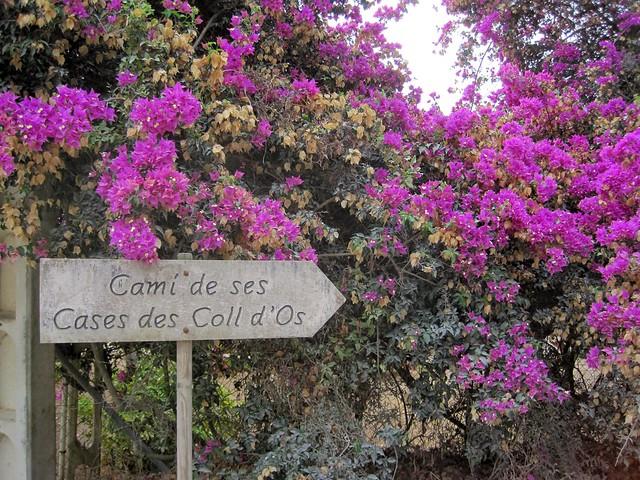 2014 Mallorca - Capdepera
