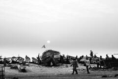 da Dakar all'isola delle conchiglie..