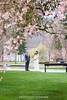 YW Spring Pre-wedding-83