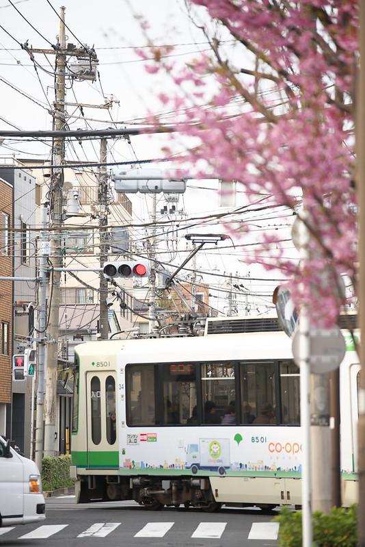 Tokyo Train Story 都電荒川線 2016年3月28日