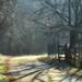Brigth path by Sappho et amicae