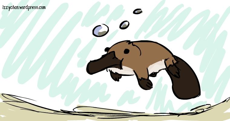 a duck beaver?