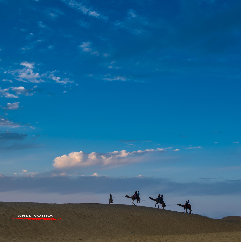 Sand dune walkers