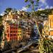 Riomaggiore - Cinque Terre by _Hadock_