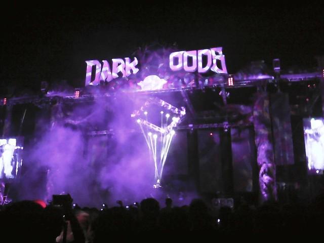 Dark Woods 2015